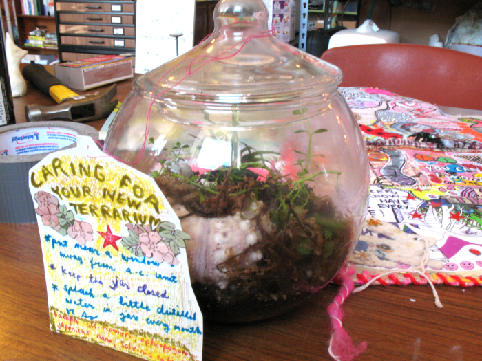 Terrariums at Cranky Yellow