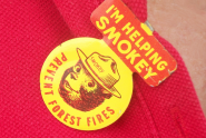 Smokey the Bear Pin