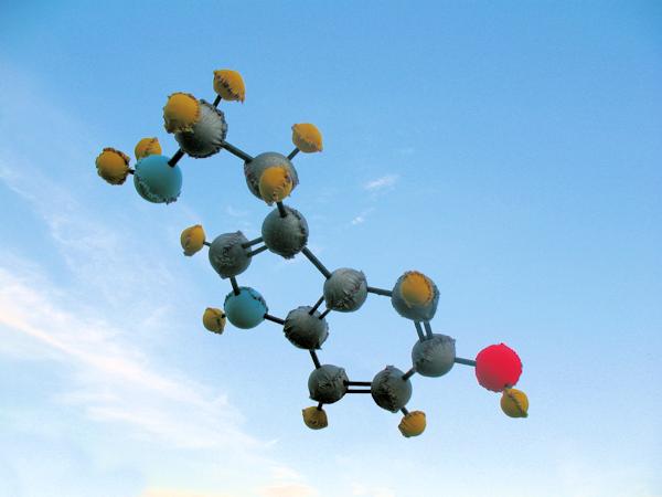 Giant Serotonin - CHARM APE