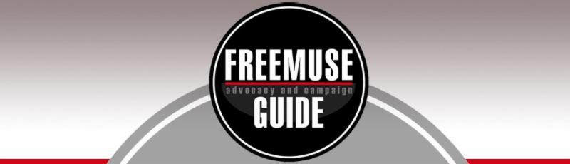 Freemuse Guide