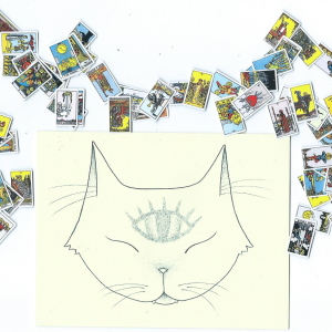 Tiny Tarot by Cate Anevski
