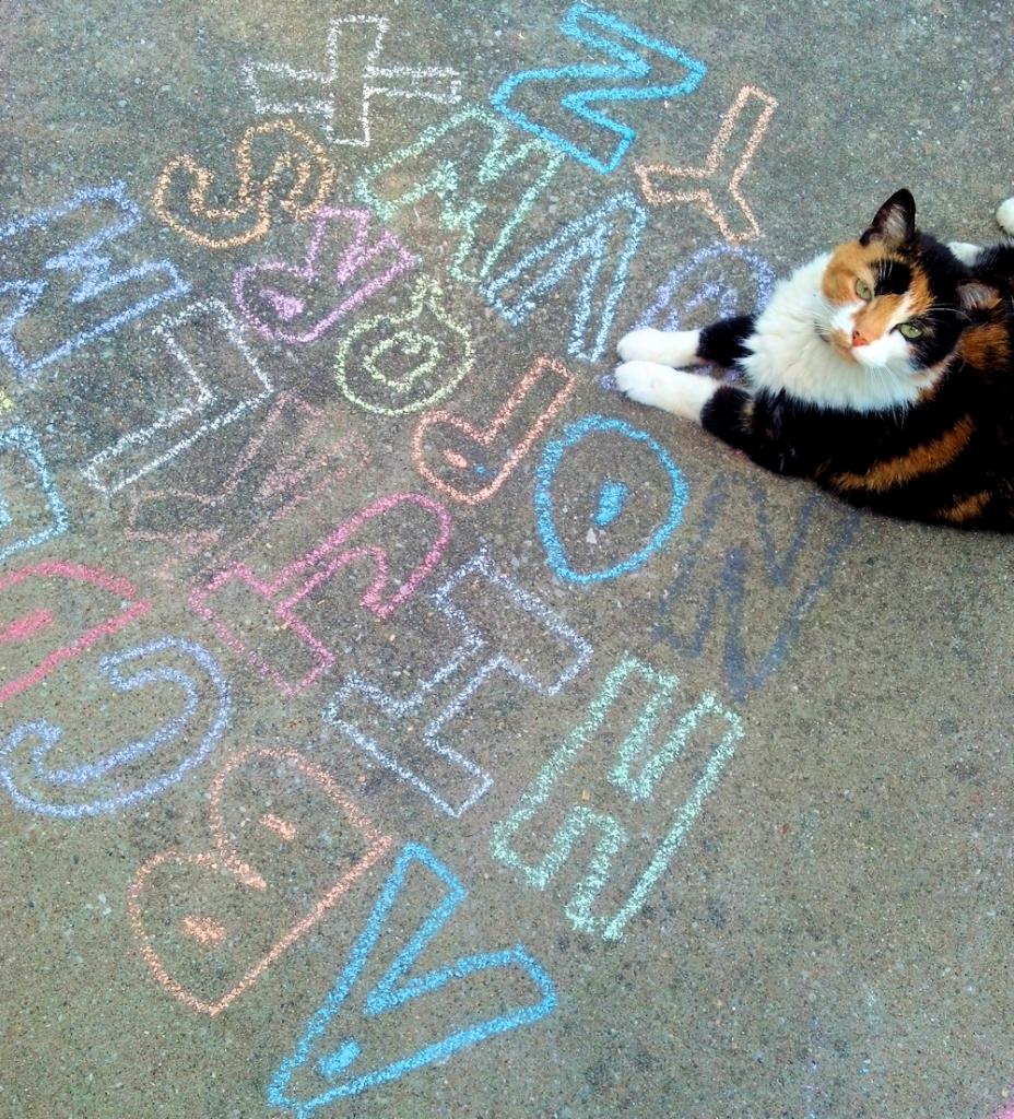 Teaching Baby Dinah Cat the Alphabet