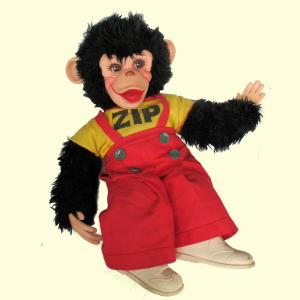 Zip The Chimp