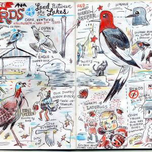 Birds of Land